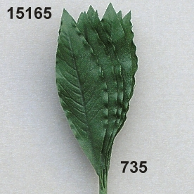 Laurel-leaf small
