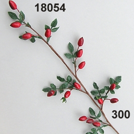 Rose hip branch x15